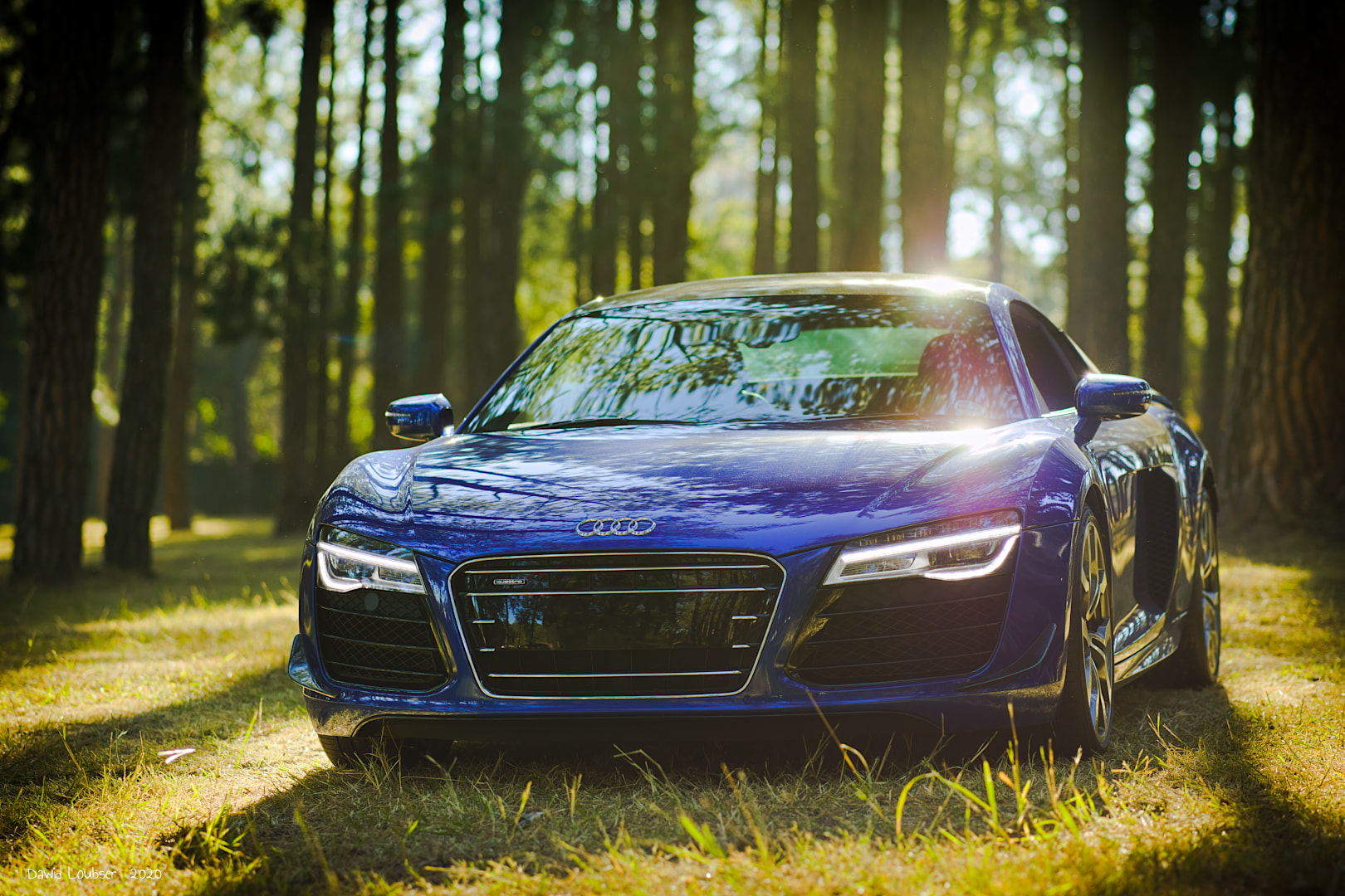 000371-r8s-forest-tyron-front-left.jpg