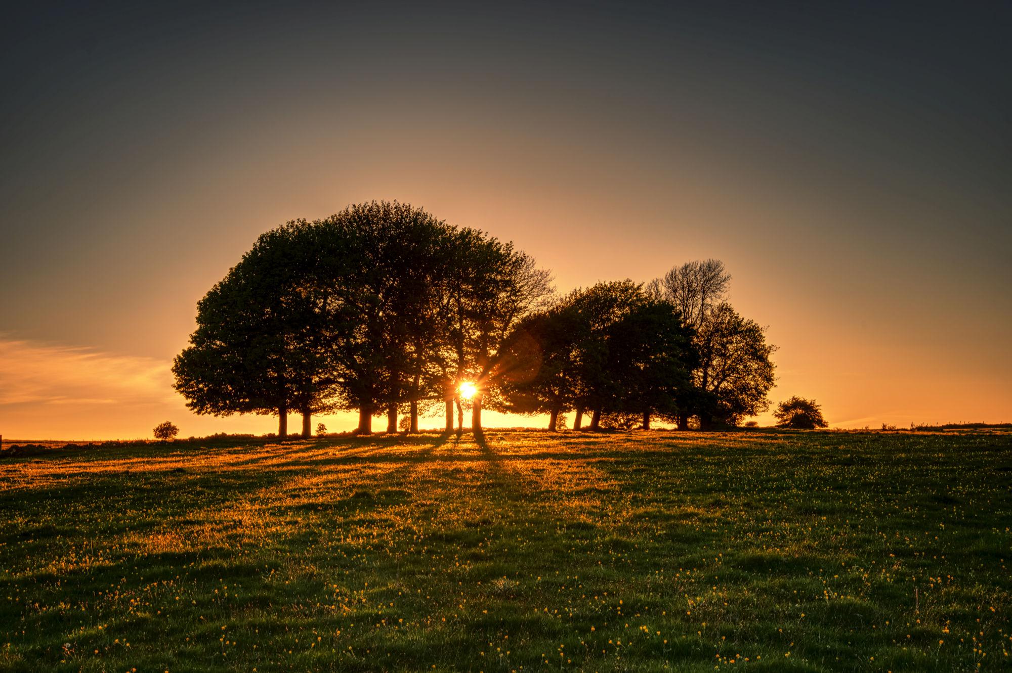 sun-going-down-sm.jpg
